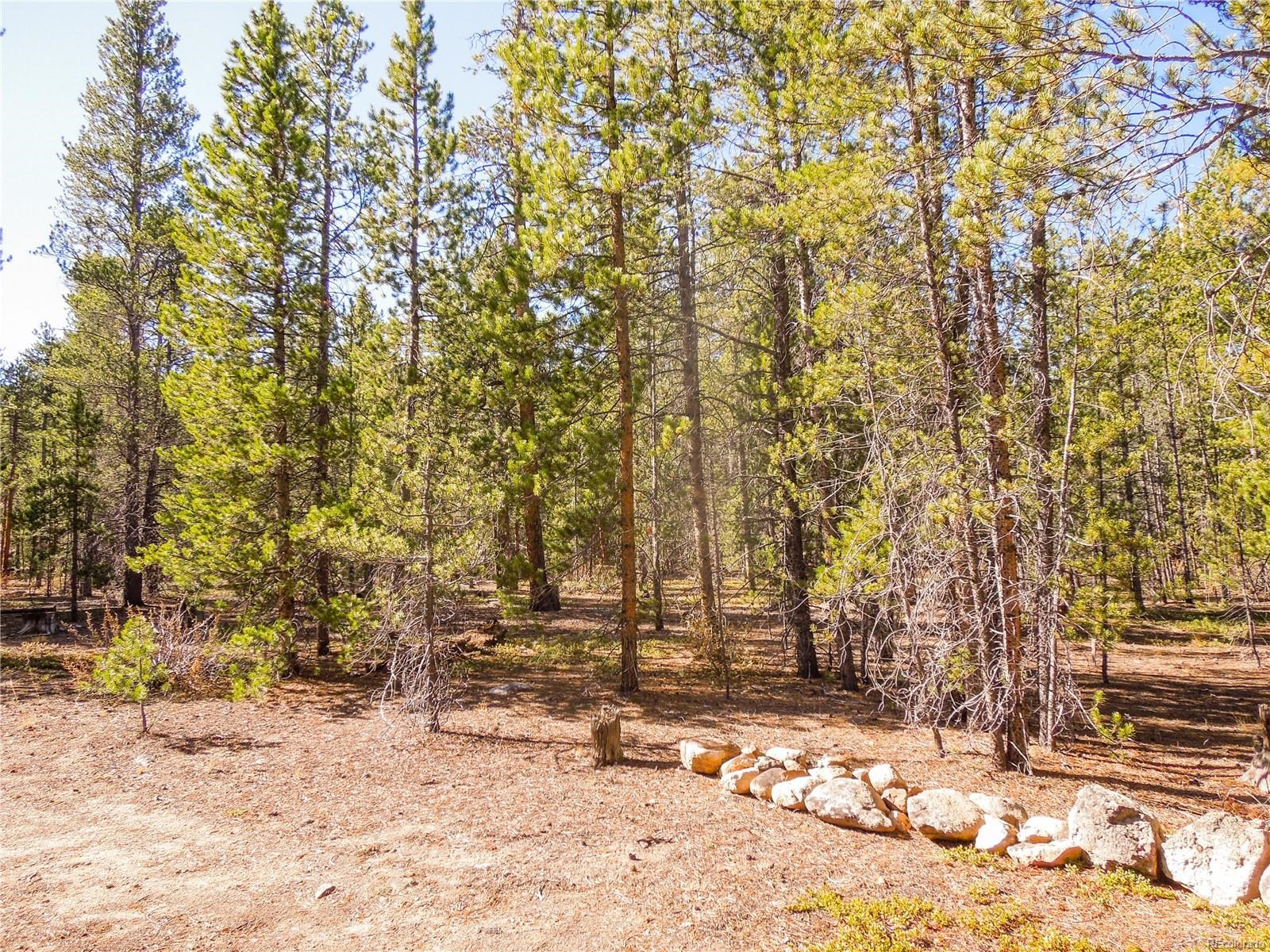 MLS# 8179364 - 9 - 852 Birch Drive, Twin Lakes, CO 81251