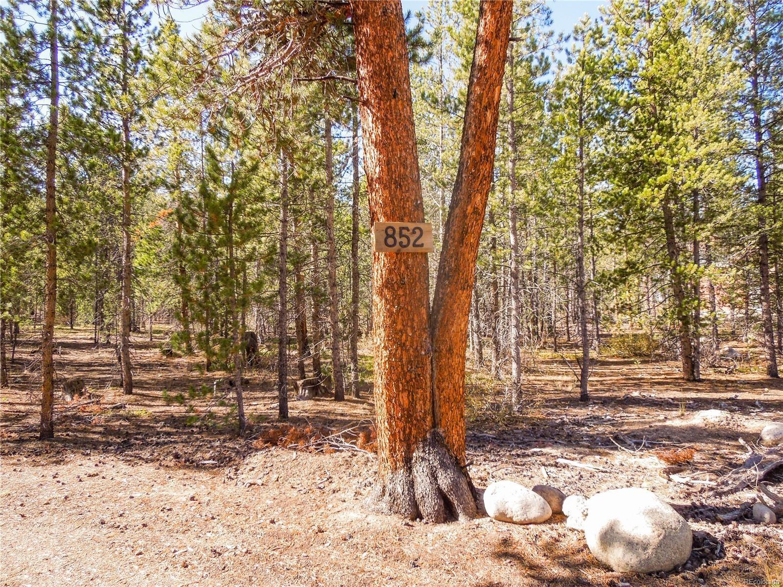 MLS# 8179364 - 10 - 852 Birch Drive, Twin Lakes, CO 81251