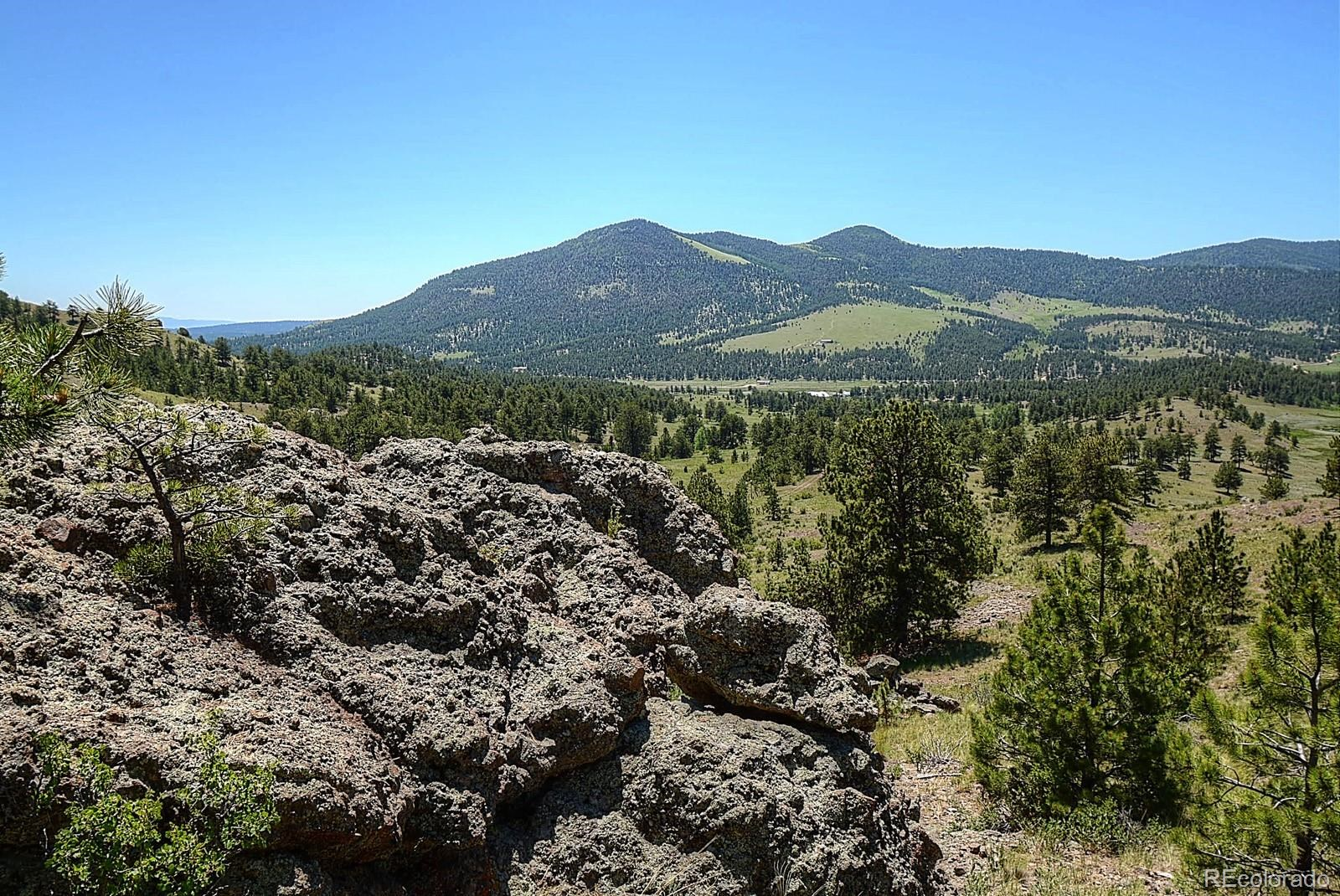 MLS# 8182693 - 34 - 396 Eagle Nest Trail, Guffey, CO 80820