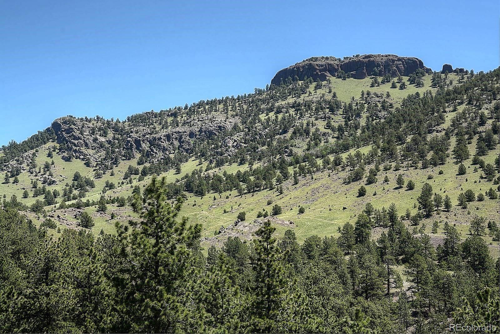 MLS# 8182693 - 35 - 396 Eagle Nest Trail, Guffey, CO 80820