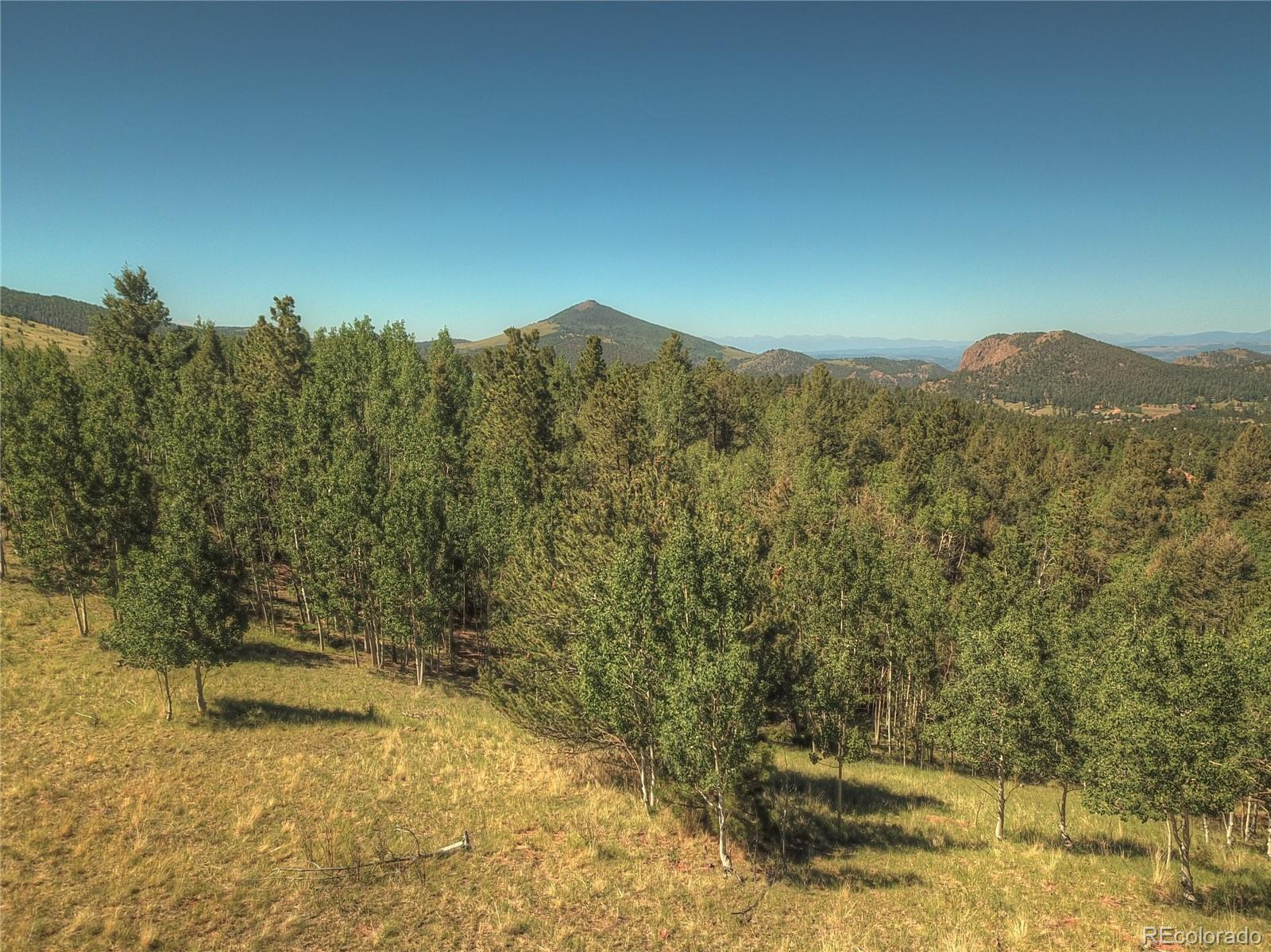 MLS# 8217565 - 12 - 985 May Queen Drive, Cripple Creek, CO 80813
