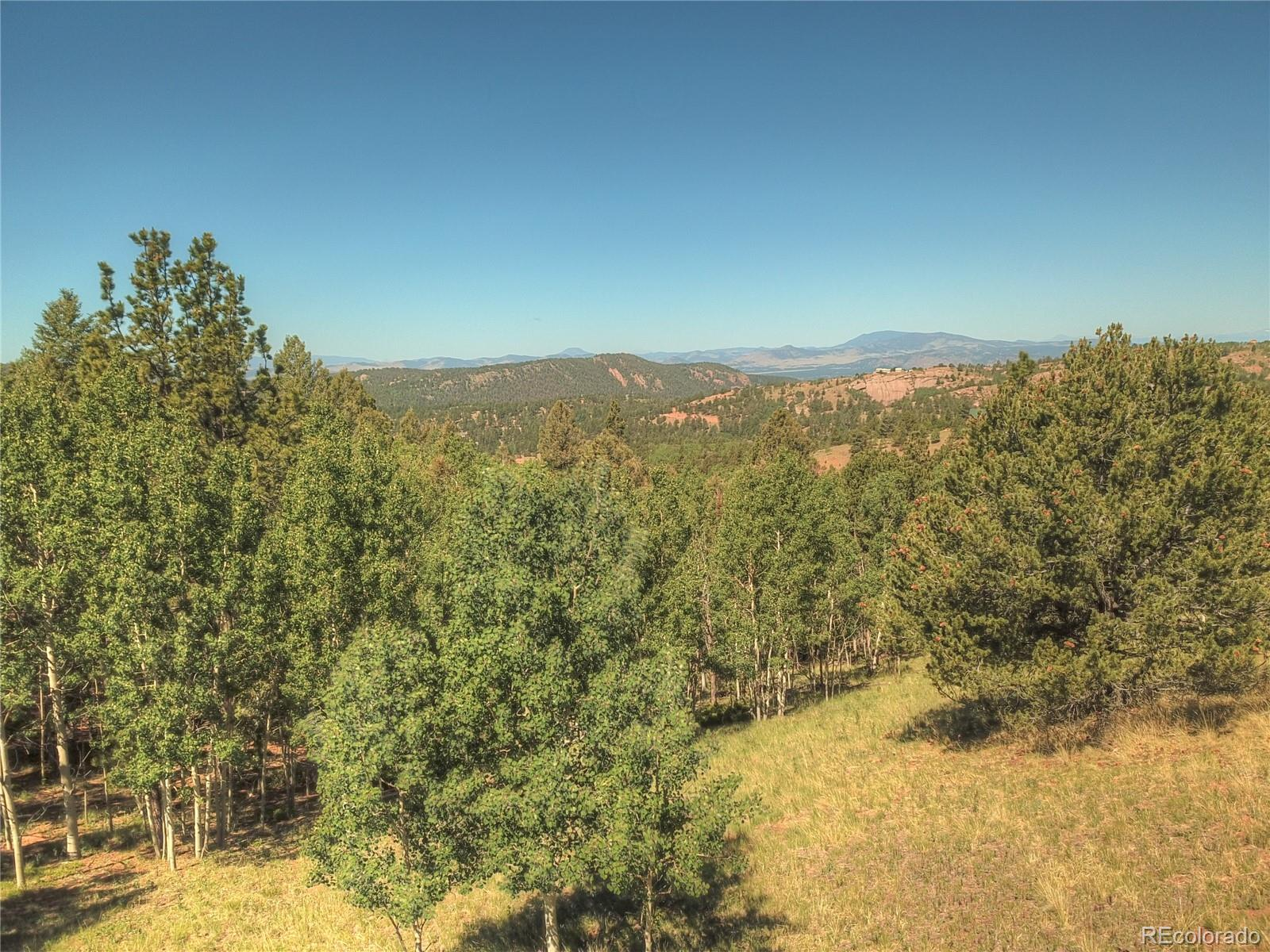 MLS# 8217565 - 13 - 985 May Queen Drive, Cripple Creek, CO 80813