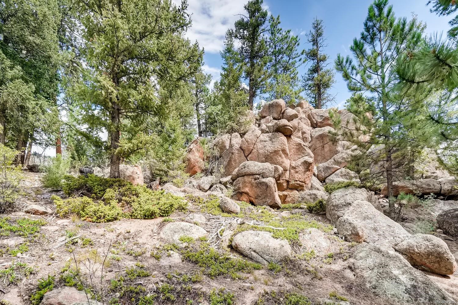 MLS# 8376760 - 26 - 30915 Walter Drive, Conifer, CO 80433
