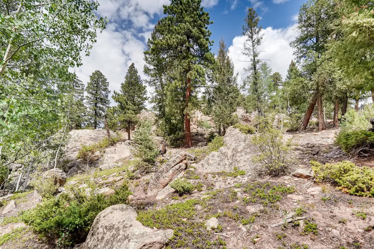 MLS# 8376760 - 27 - 30915 Walter Drive, Conifer, CO 80433
