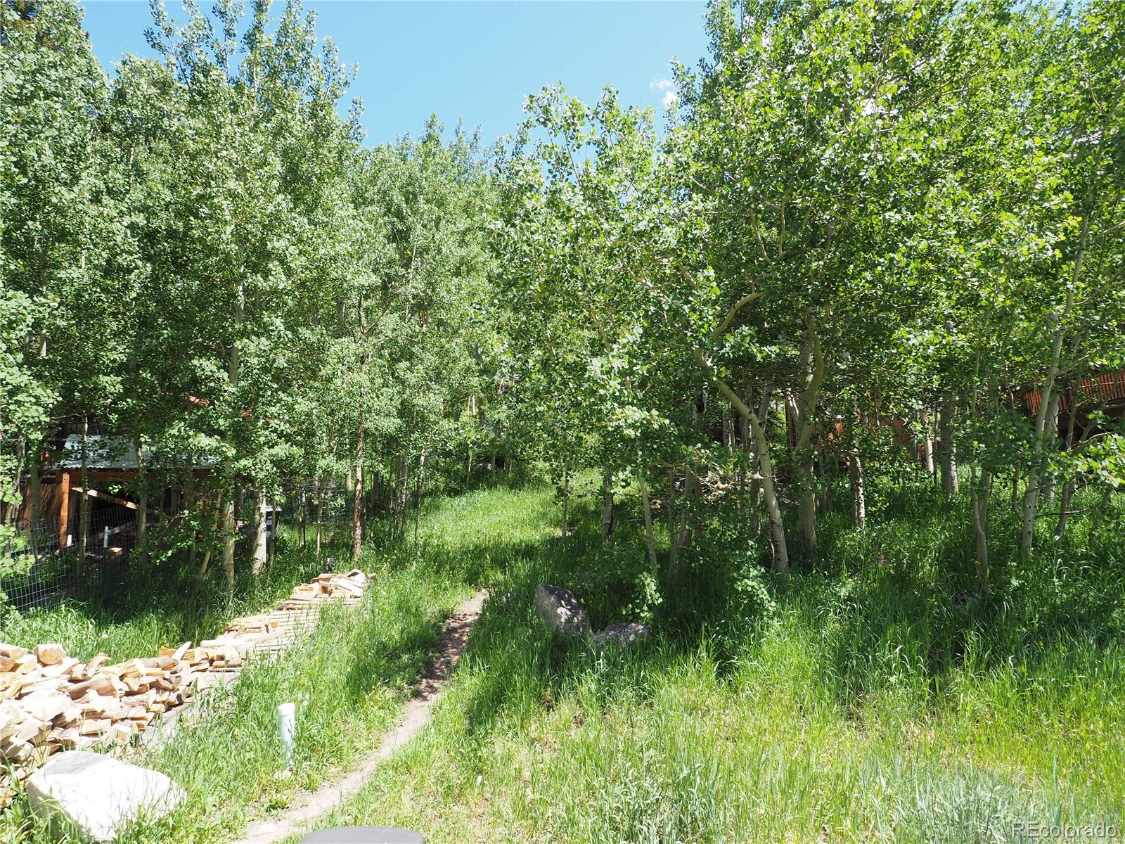 MLS# 8404962 - 10 - 566 Washington Avenue, Nederland, CO 80466