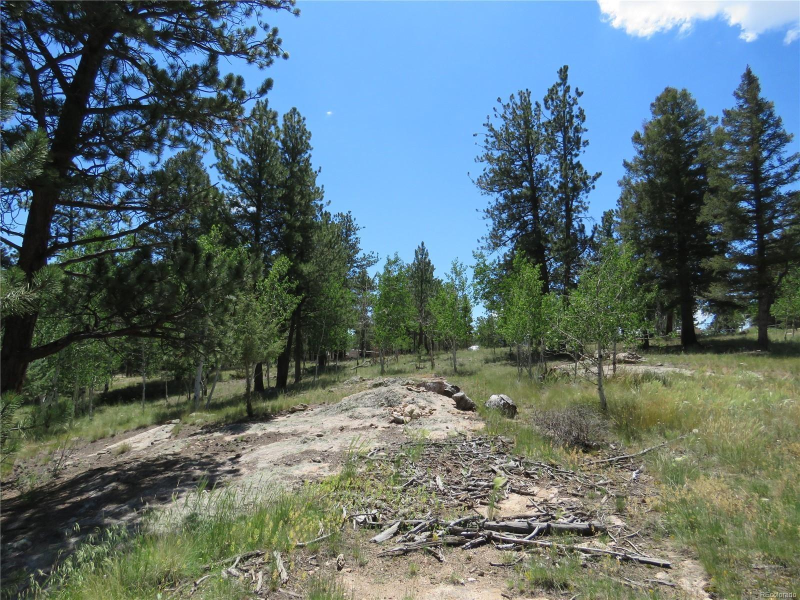 MLS# 8486542 - 15 - 43 Harness Trail, Florissant, CO 80816