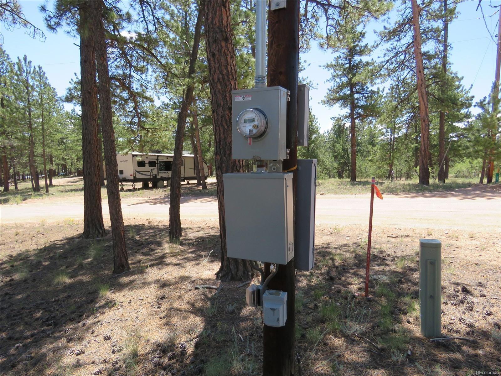 MLS# 8486542 - 4 - 43 Harness Trail, Florissant, CO 80816
