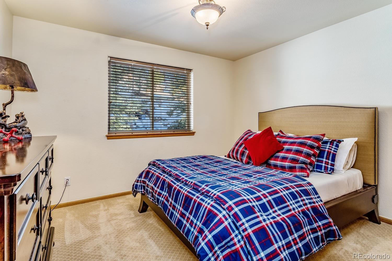 MLS# 8643354 - 16 - 206 Echo Lake Drive, Evergreen, CO 80439