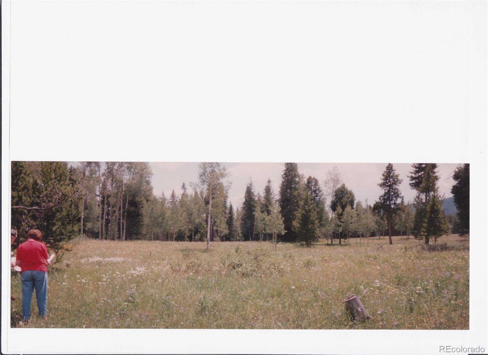 MLS# 8768882 - 2 - 01 Halter Trail, Oak Creek, CO 80467