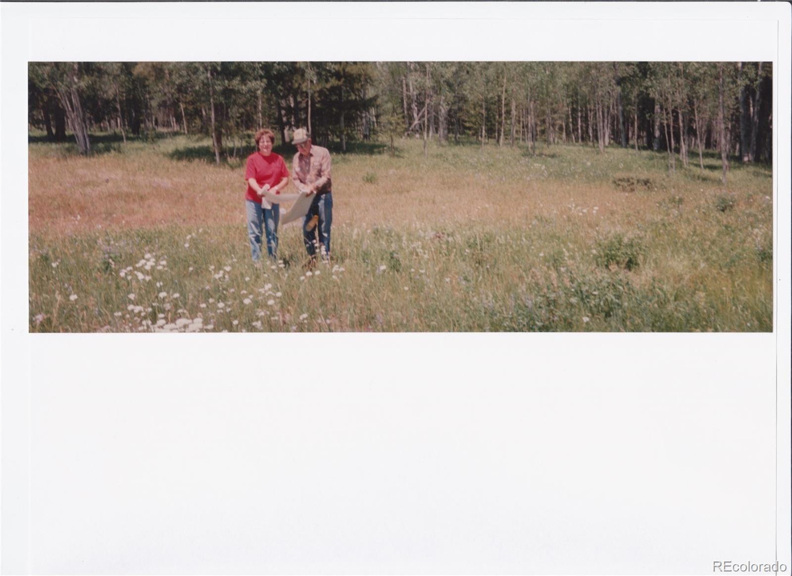 MLS# 8768882 - 3 - 01 Halter Trail, Oak Creek, CO 80467