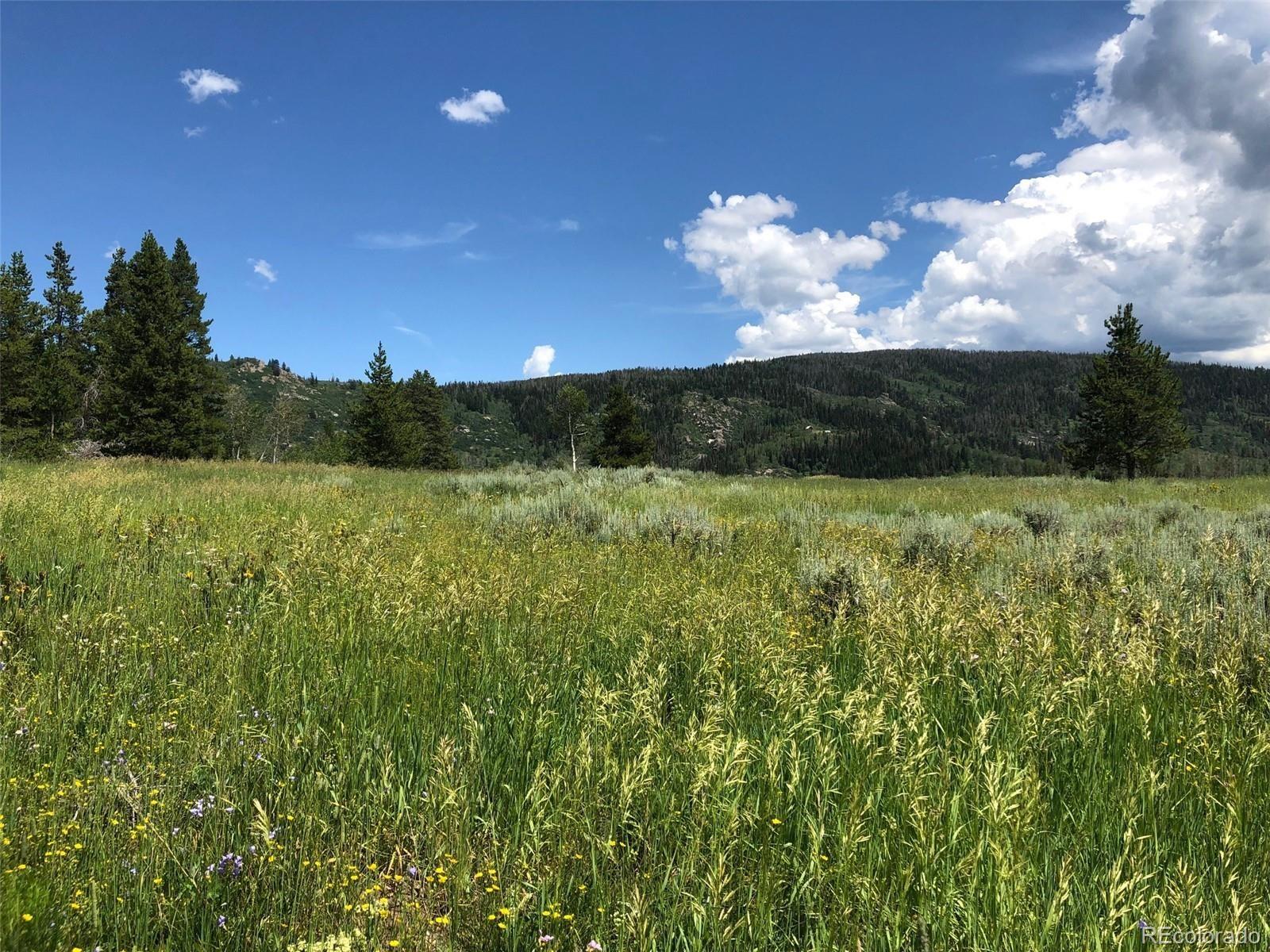 MLS# 8768882 - 5 - 01 Halter Trail, Oak Creek, CO 80467