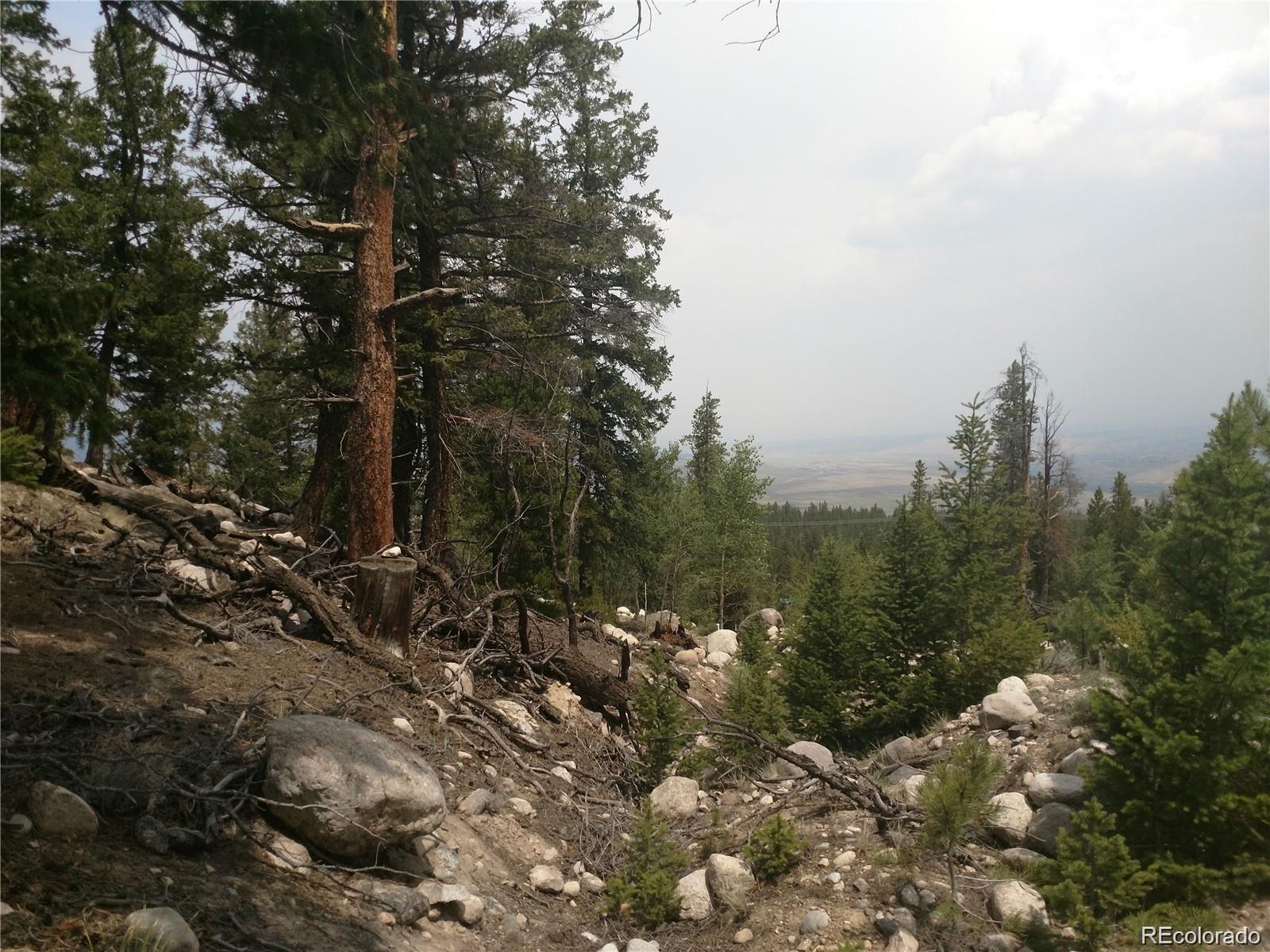 MLS# 8880034 - 3 - 368 Mount Elbert Drive, Twin Lakes, CO 81251