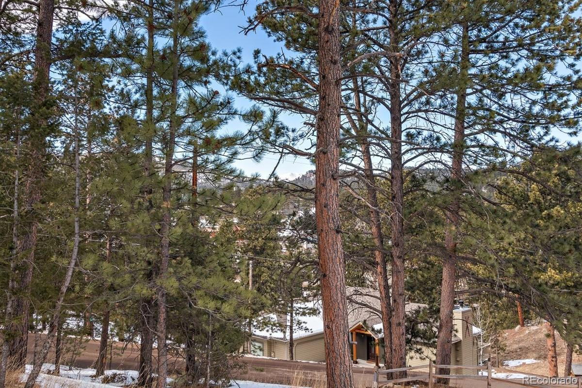 MLS# 8941585 - 31 - 28342 Camel Heights Circle, Evergreen, CO 80439