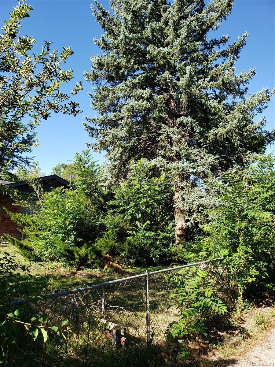 MLS# 8960672 - 14 - 1749 Hoyt Street, Lakewood, CO 80215