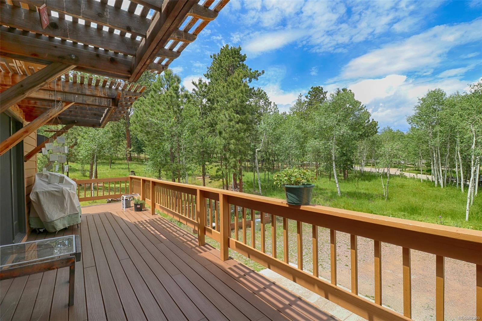 MLS# 8980637 - 32 - 60 Sparrow Court, Bailey, CO 80421