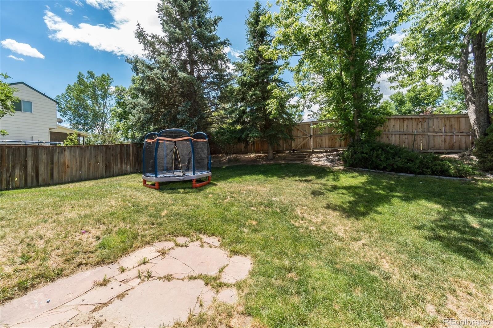 MLS# 9034998 - 21 - 6142 Willowmore Court, Highlands Ranch, CO 80130