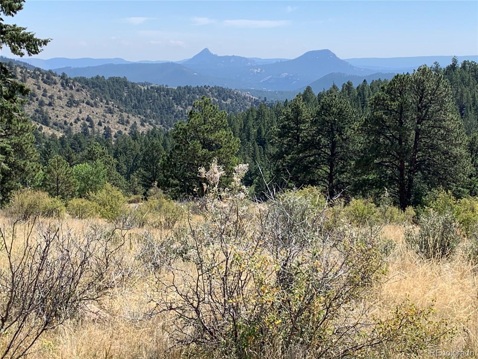 MLS# 9262084 - 2 - 14714 Wetterhorn Peak Trail, Pine, CO 80470