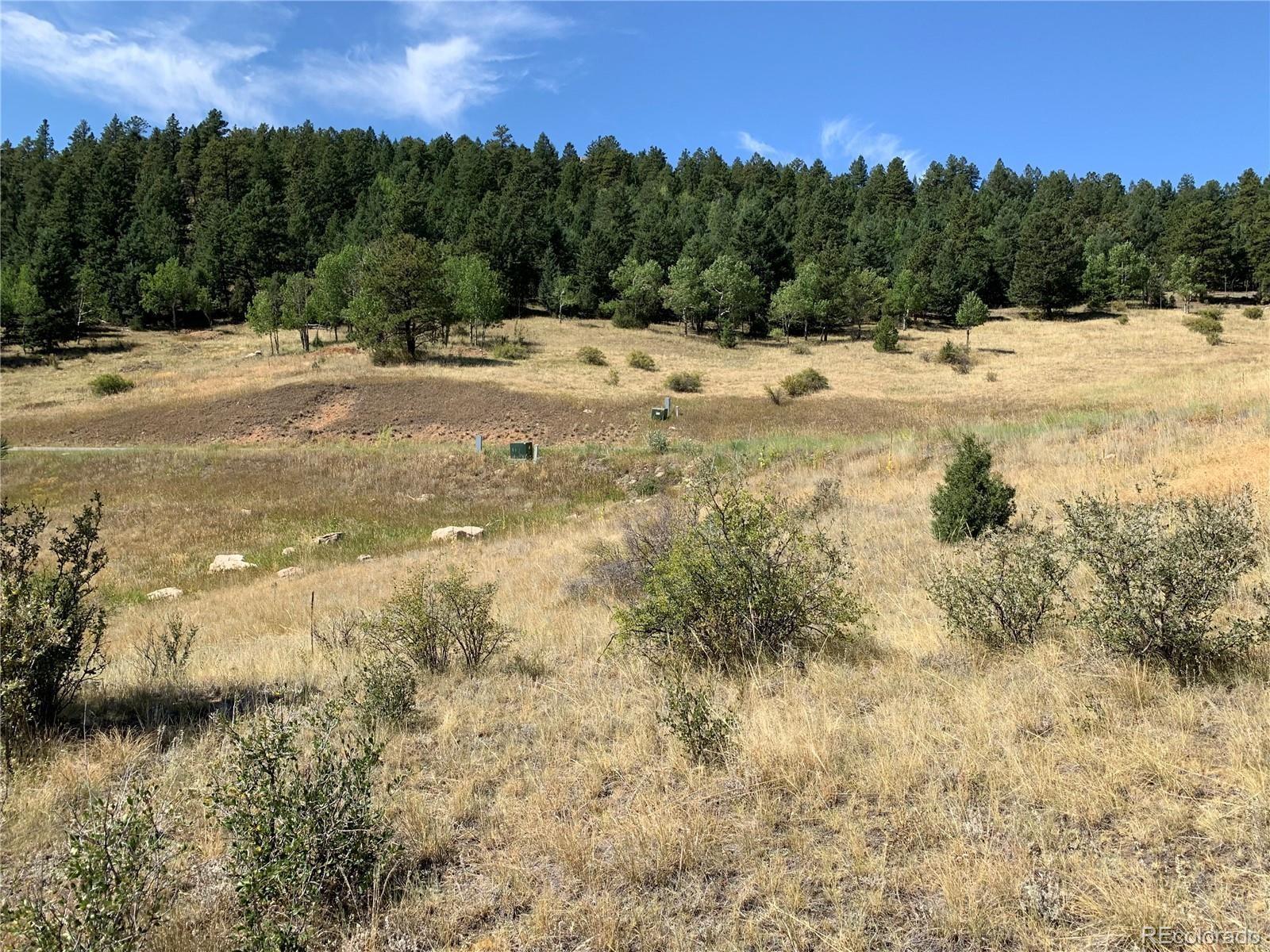 MLS# 9262084 - 11 - 14714 Wetterhorn Peak Trail, Pine, CO 80470