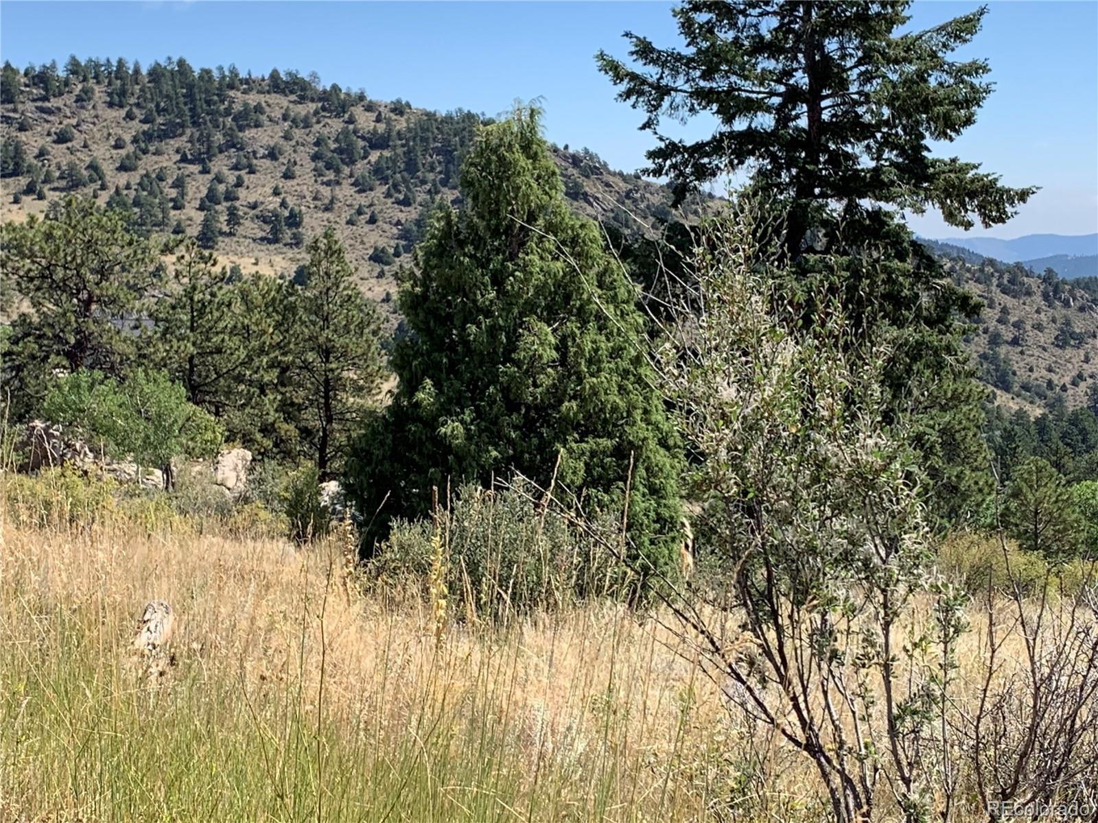 MLS# 9262084 - 12 - 14714 Wetterhorn Peak Trail, Pine, CO 80470