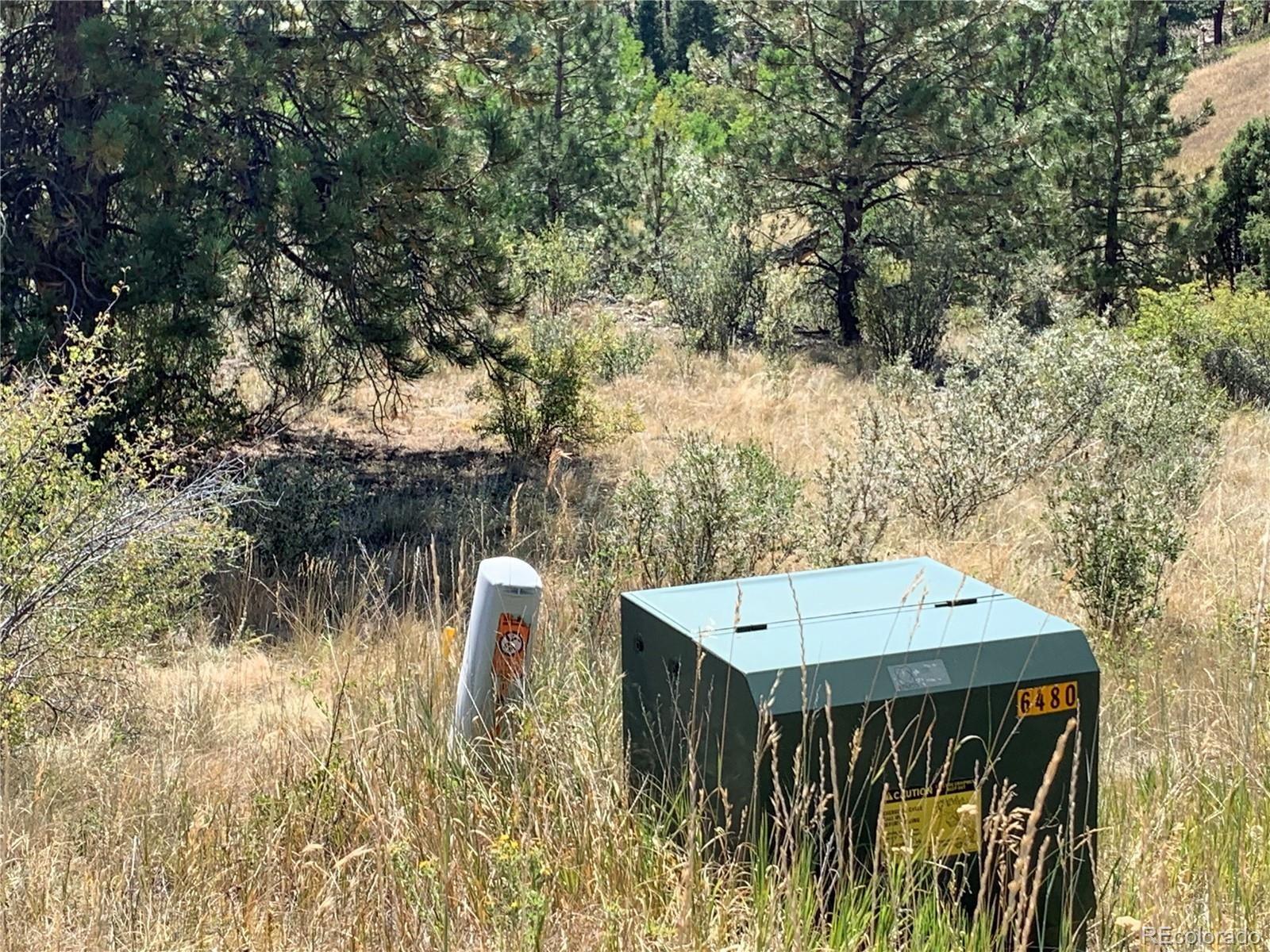 MLS# 9262084 - 13 - 14714 Wetterhorn Peak Trail, Pine, CO 80470