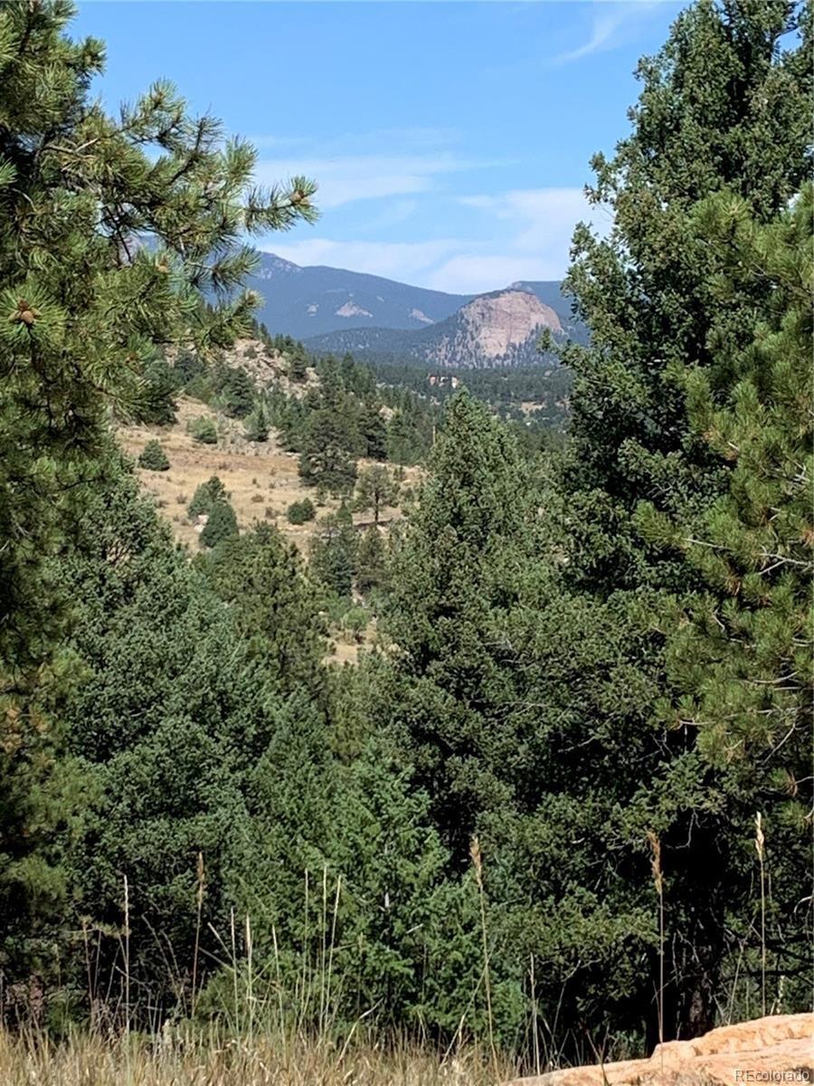 MLS# 9262084 - 3 - 14714 Wetterhorn Peak Trail, Pine, CO 80470