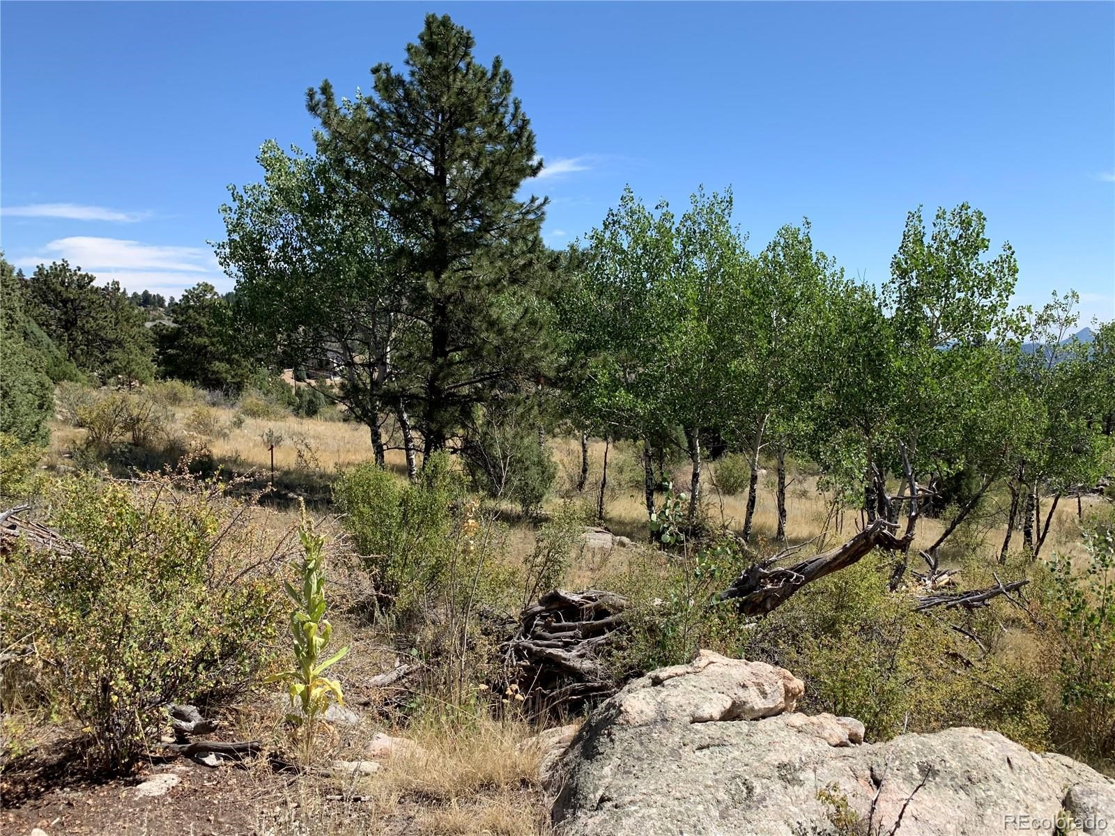 MLS# 9262084 - 5 - 14714 Wetterhorn Peak Trail, Pine, CO 80470