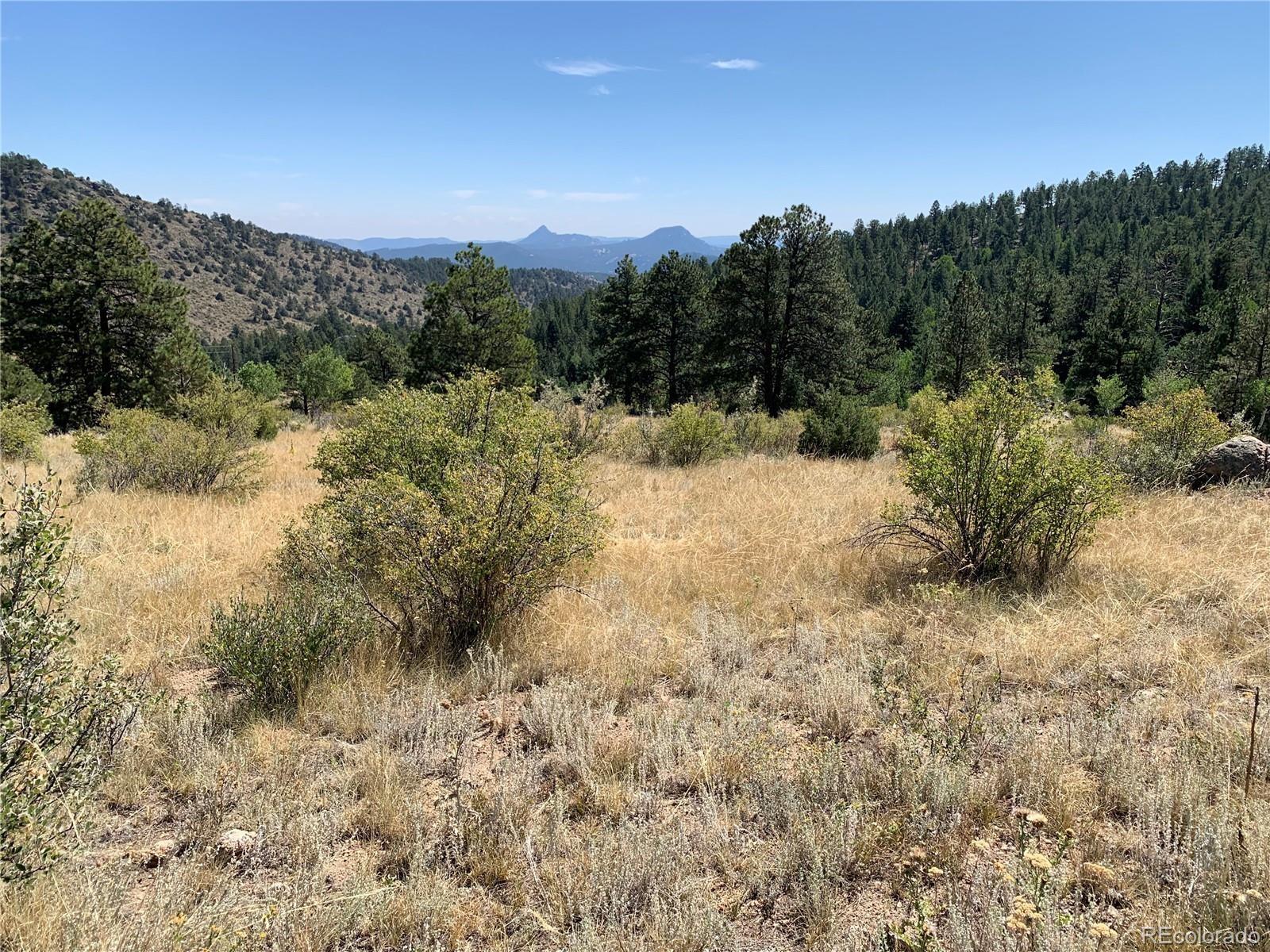 MLS# 9262084 - 6 - 14714 Wetterhorn Peak Trail, Pine, CO 80470