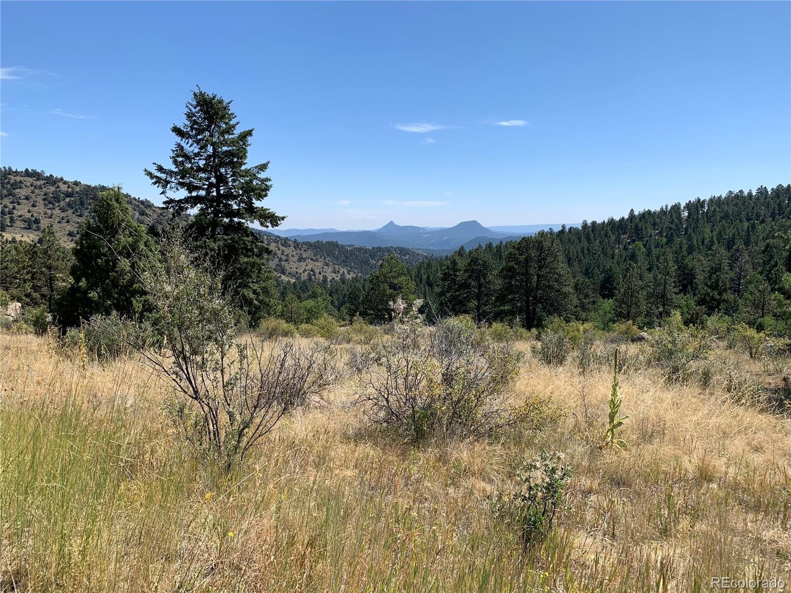 MLS# 9262084 - 7 - 14714 Wetterhorn Peak Trail, Pine, CO 80470