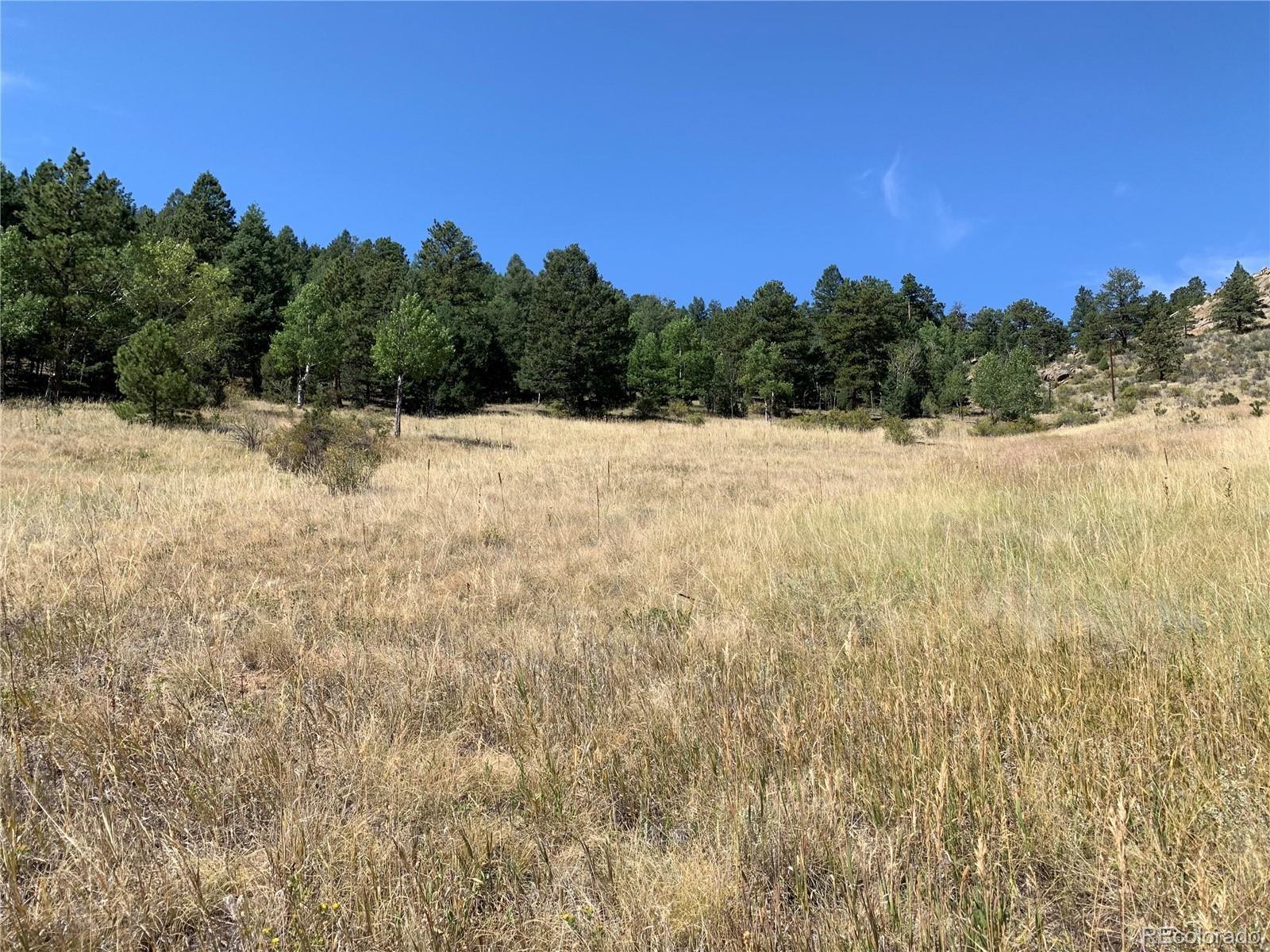 MLS# 9262084 - 8 - 14714 Wetterhorn Peak Trail, Pine, CO 80470