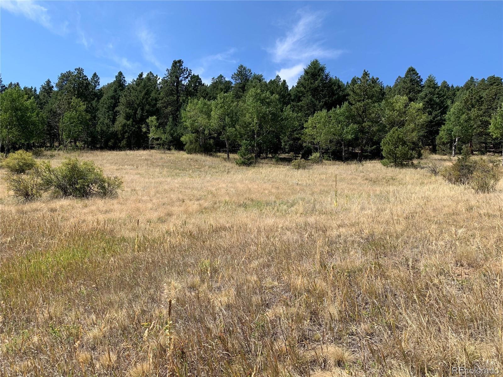 MLS# 9262084 - 9 - 14714 Wetterhorn Peak Trail, Pine, CO 80470