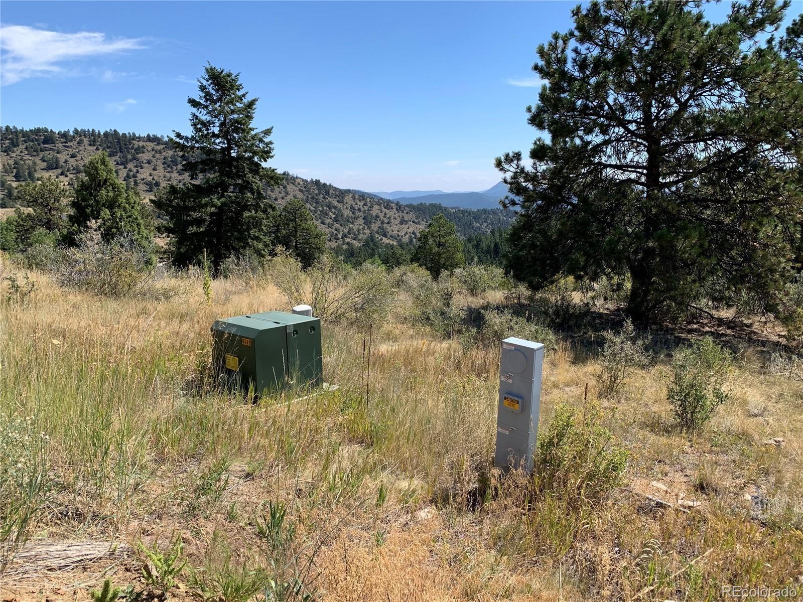 MLS# 9262084 - 10 - 14714 Wetterhorn Peak Trail, Pine, CO 80470