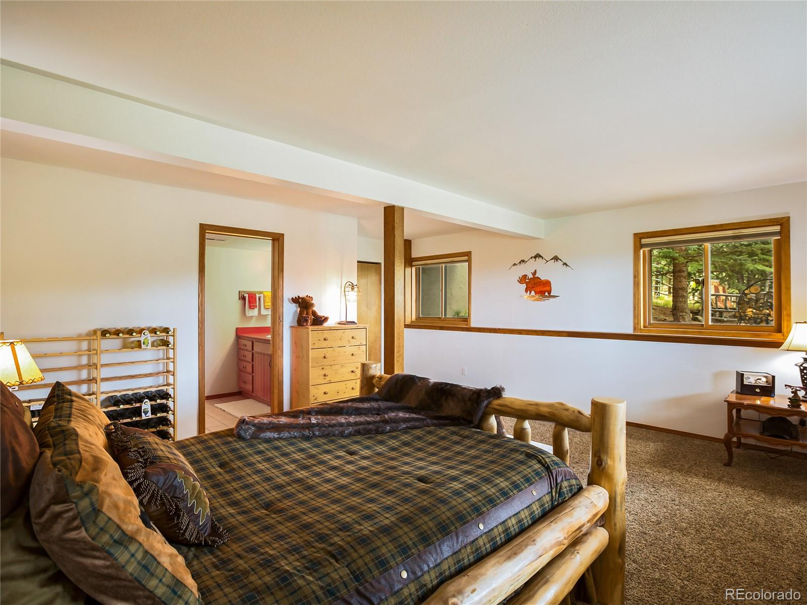 MLS# 9316646 - 28 - 904 Old Ranch Road, Florissant, CO 80816