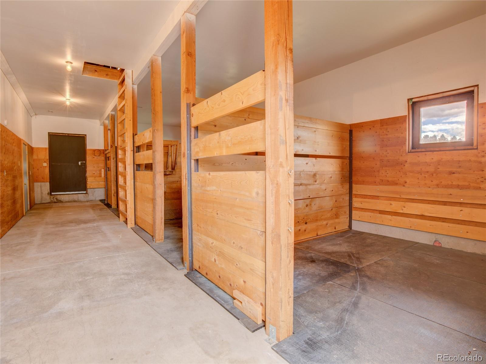 MLS# 9316646 - 36 - 904 Old Ranch Road, Florissant, CO 80816