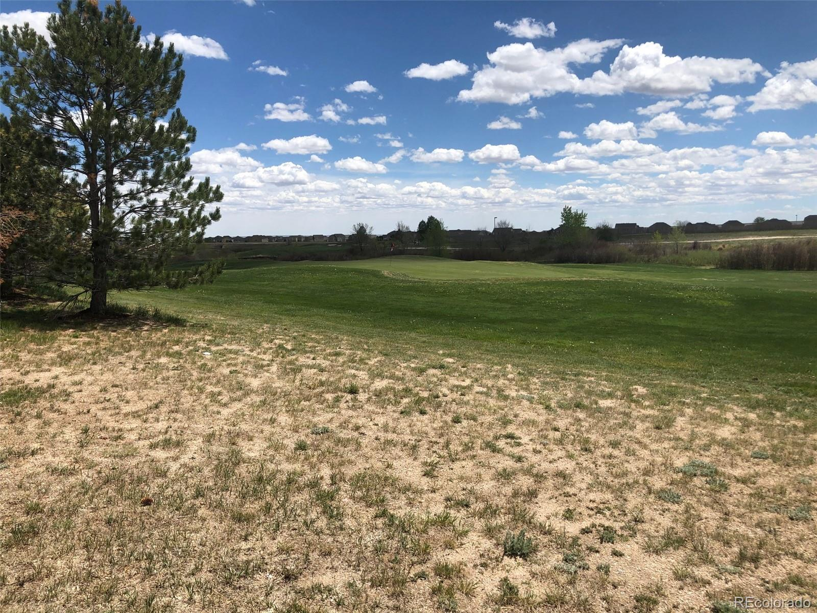 MLS# 9327956 - 39 - 12448 Mt Belford Way, Peyton, CO 80831