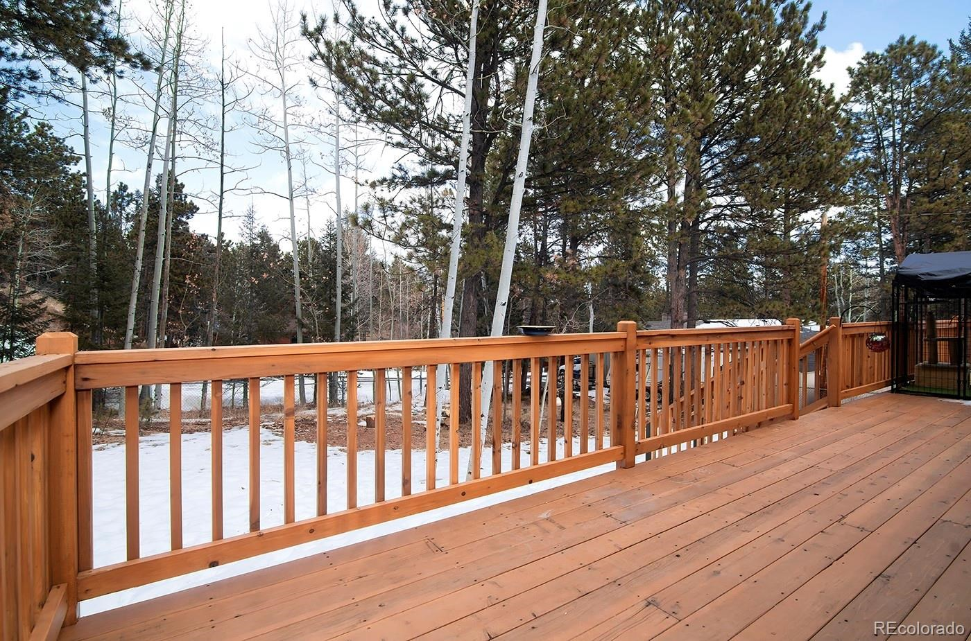 MLS# 9437926 - 20 - 1314 W Browning Avenue, Woodland Park, CO 80863