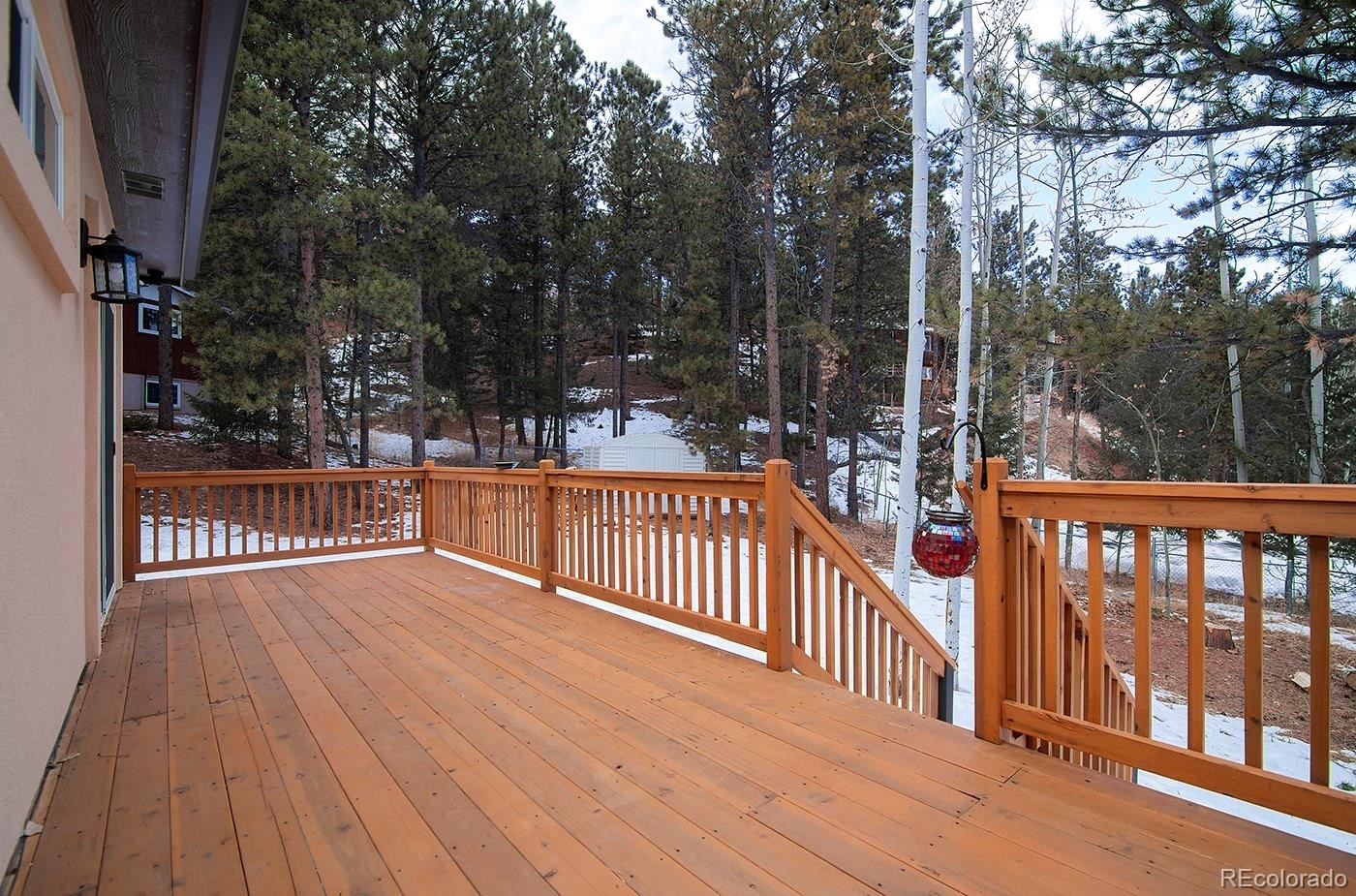 MLS# 9437926 - 21 - 1314 W Browning Avenue, Woodland Park, CO 80863