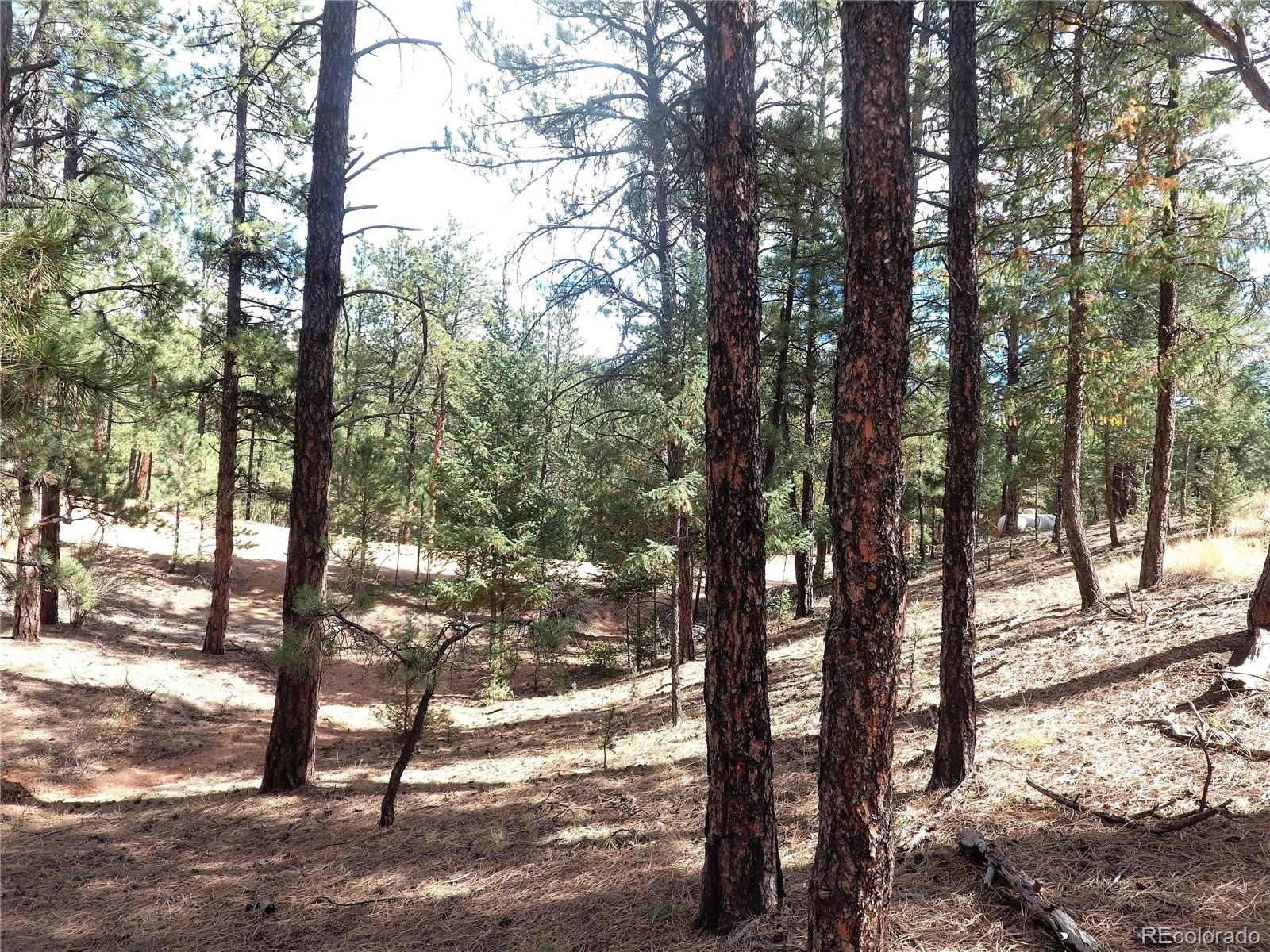 MLS# 9494627 - 18 - 16456 Ouray Road W , Pine, CO 80470