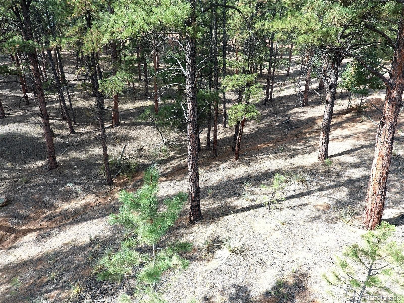 MLS# 9494627 - 19 - 16456 Ouray Road W , Pine, CO 80470