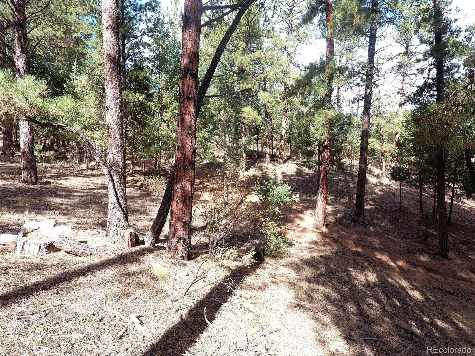 MLS# 9494627 - 20 - 16456 Ouray Road W , Pine, CO 80470