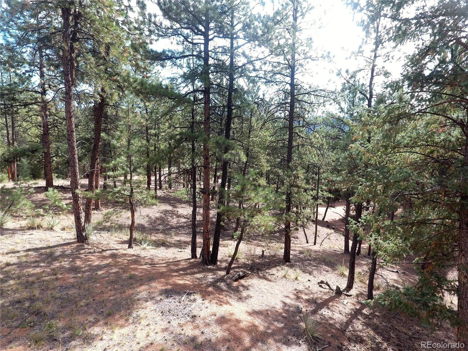 MLS# 9494627 - 21 - 16456 Ouray Road W , Pine, CO 80470