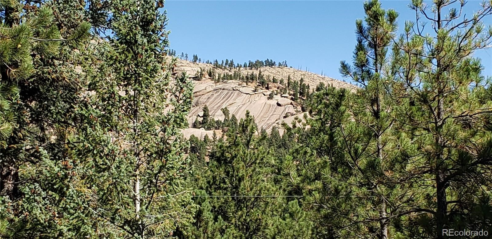 MLS# 9494627 - 22 - 16456 Ouray Road W , Pine, CO 80470