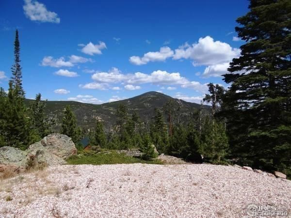 MLS# 9539302 - 5 - 741 Shoshoni Drive, Red Feather Lakes, CO 80545