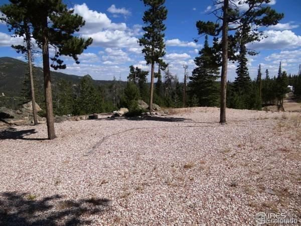 MLS# 9539302 - 9 - 741 Shoshoni Drive, Red Feather Lakes, CO 80545