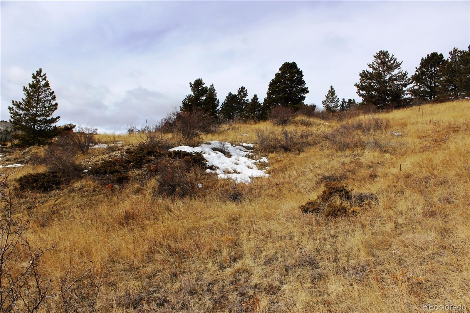 MLS# 9676701 - 1 -   W Fourth Street, Central City, CO 80427