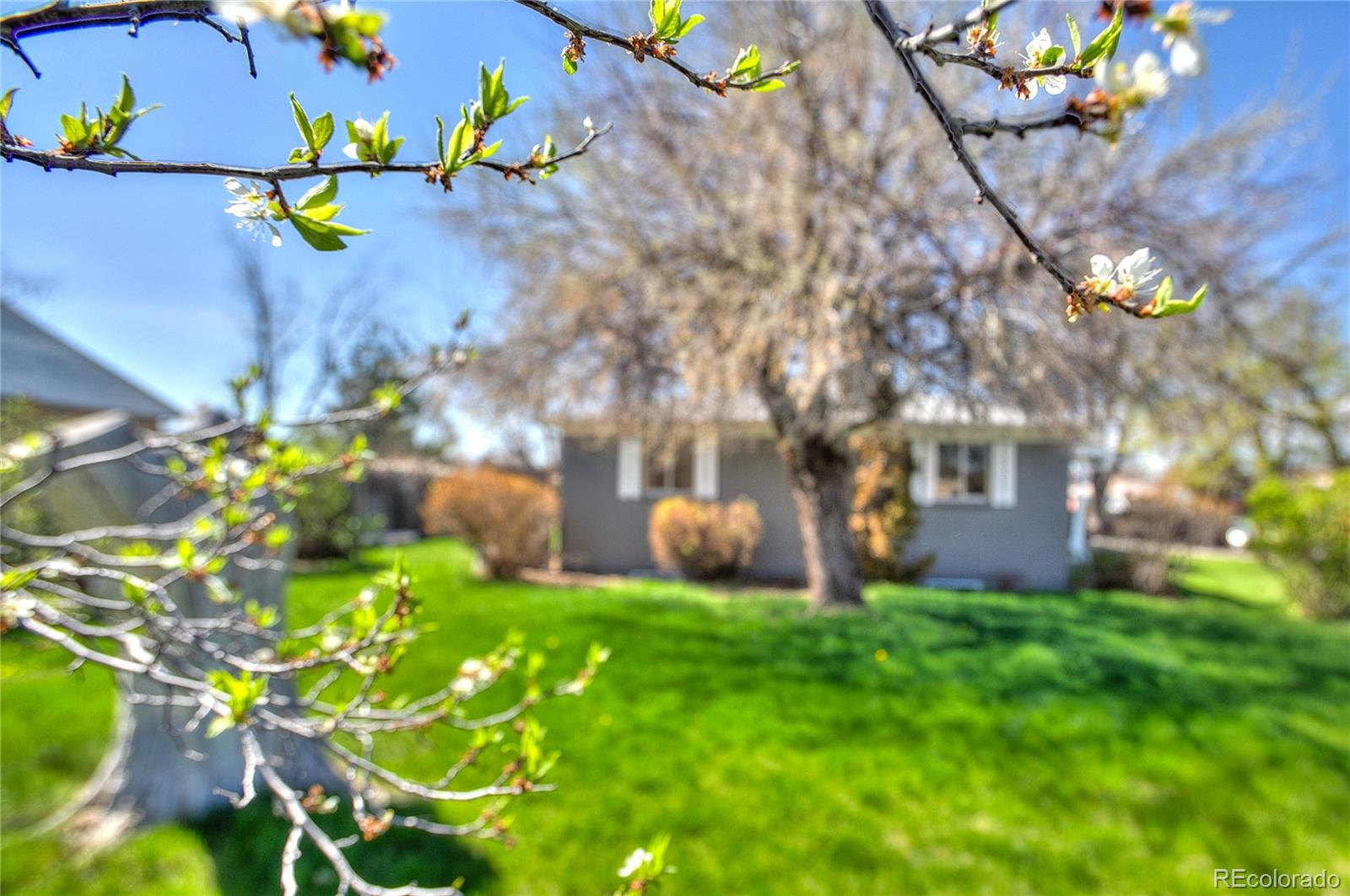 MLS# 9710462 - 35 - 1250 W 7th Ave Dr, Broomfield, CO 80020