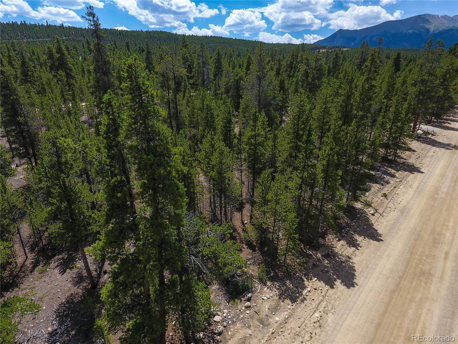MLS# 9828388 - 1 - 284  Birch Drive, Twin Lakes, CO 81251