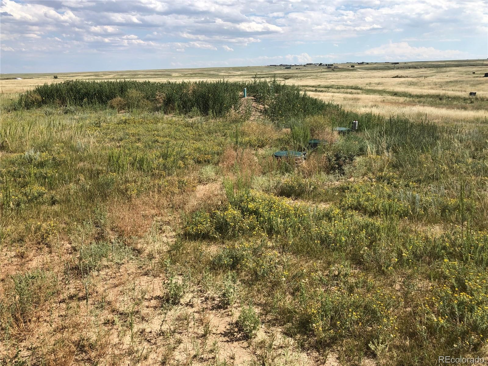 MLS# 9935541 - 25 - 6615 Mulberry Road, Calhan, CO 80808