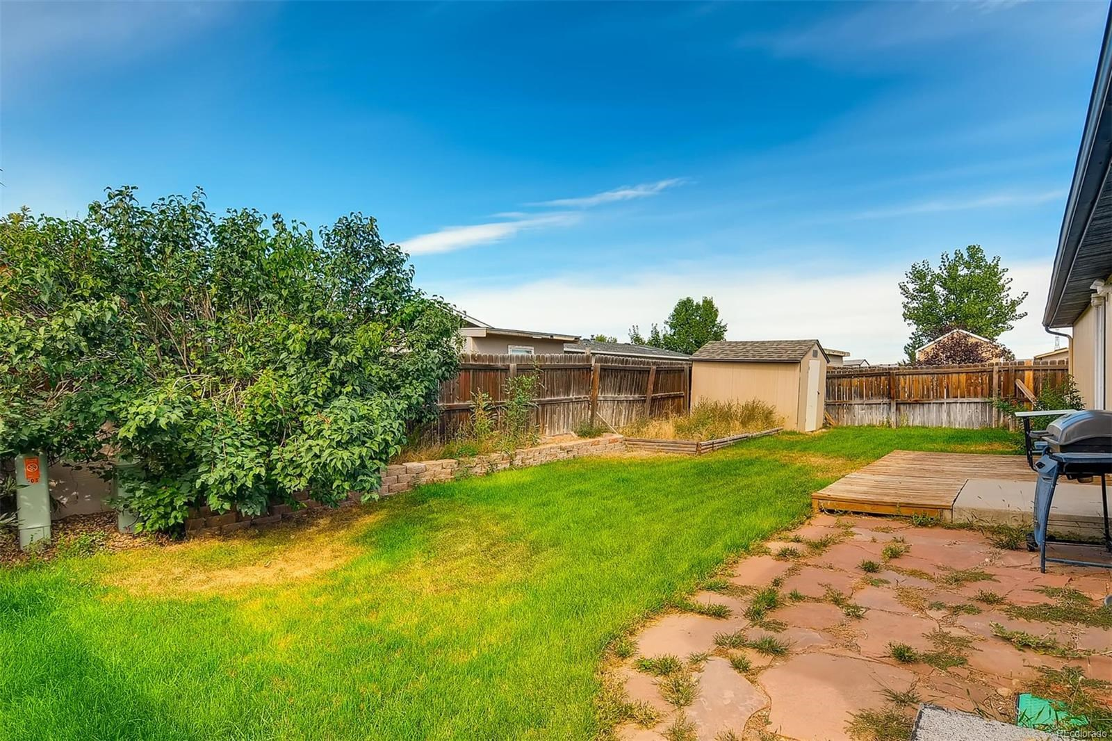 MLS# 9973584 - 11 - 103 Stampede Place, Lochbuie, CO 80603
