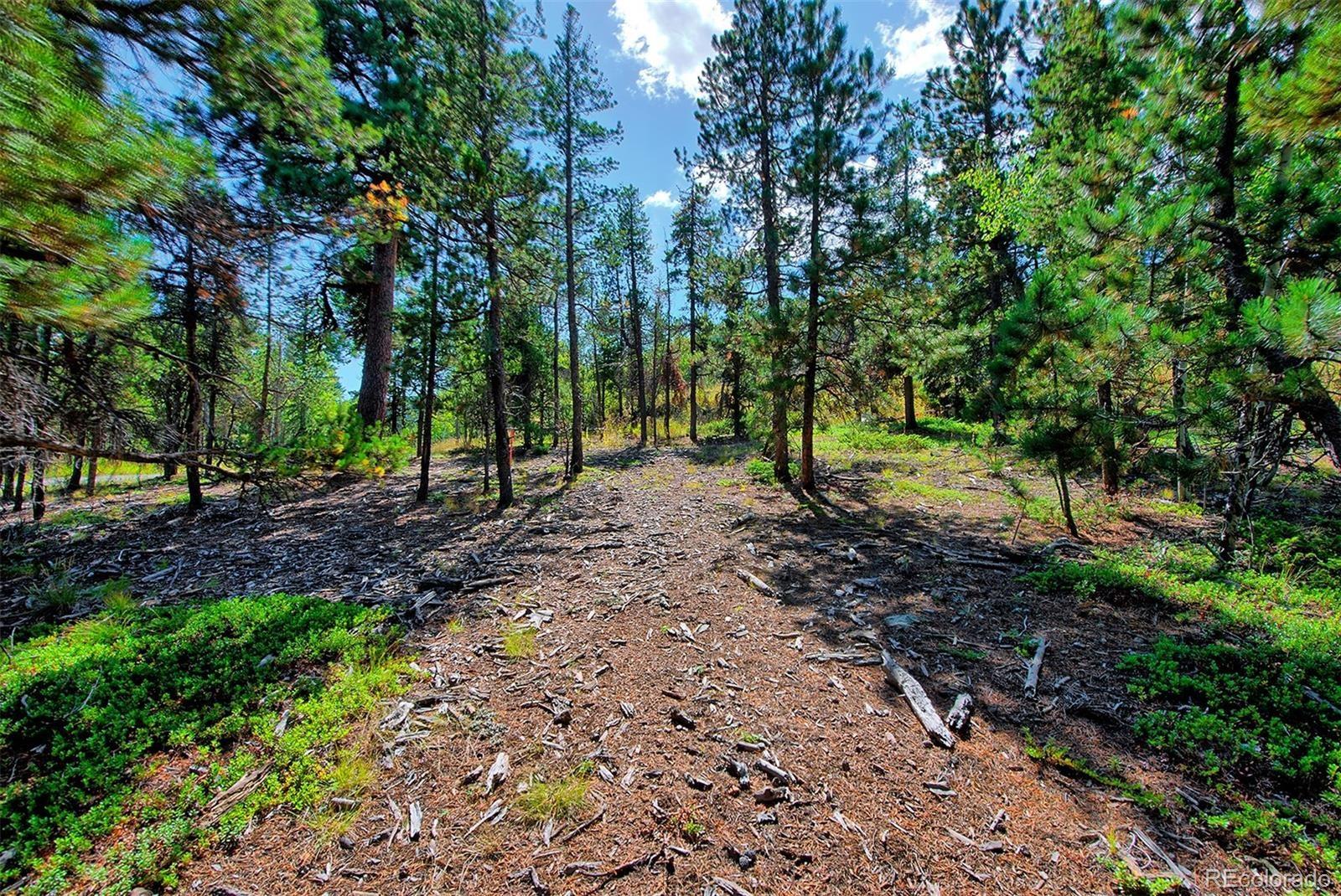 MLS# 2193114 - 1 - 1 Mountain Estate Drive, Evergreen, CO 80439