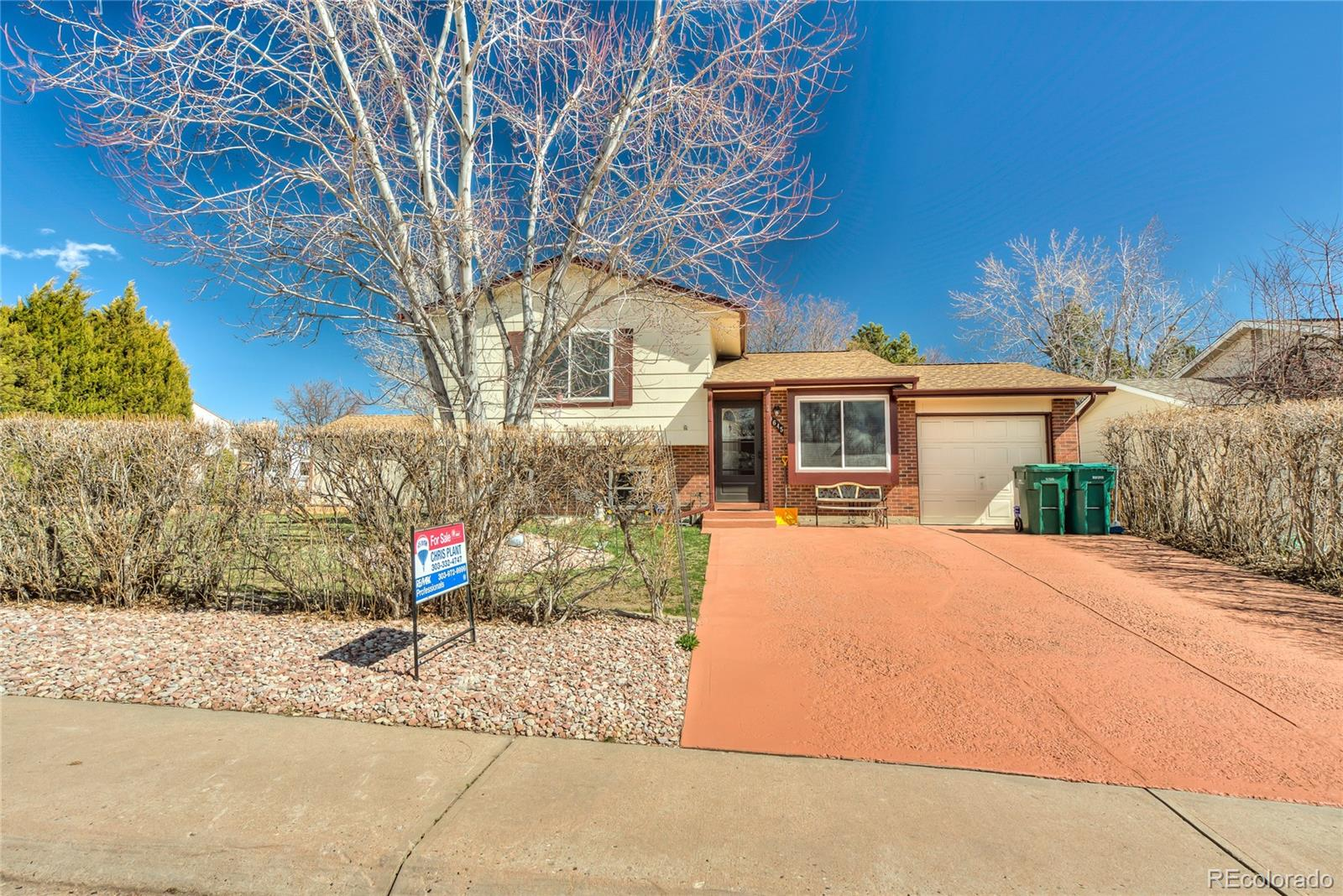 MLS# 2811379 - 1 - 9645 W David Avenue, Littleton, CO 80128